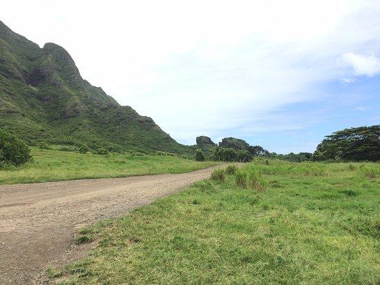 Kaneohe, Гавайи: 키스하는 고릴라 바위?