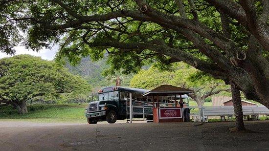 Kaneohe, Χαβάη: 투어차량..
