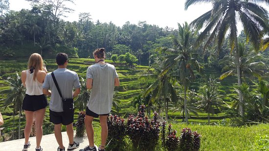 Bali Private Tour