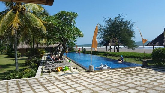Taksu Holiday Club: View from the cafe