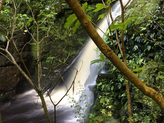 Papatowai, New Zealand: photo1.jpg