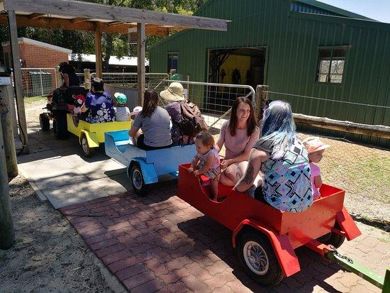 landsdale farm school kids loves the tractor ride