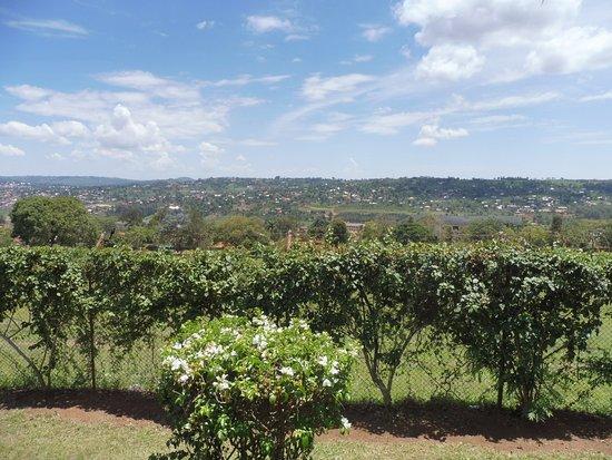 Masaka, Uganda: The beautiful view from the outdoor seating at Plot 99