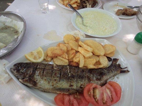 Argyroupolis, Grecia: pestrofa