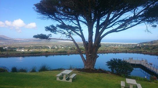 Noordhoek, Νότια Αφρική: DSC_0187_large.jpg