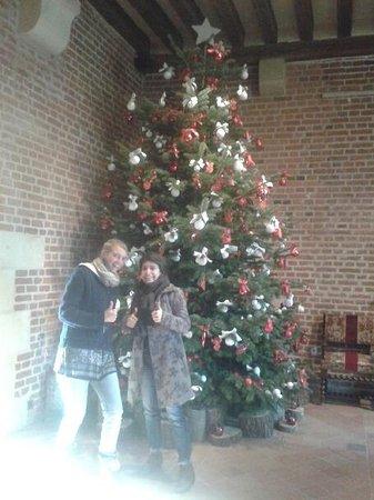 Chedigny, France : Visite du Clos Lucé avec Elise et Emilie au Nouvel An