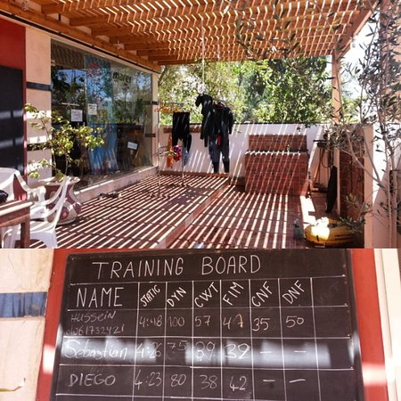 Freedive Dahab : The office, which provides a great area for hanging out and meet fellow freedivers