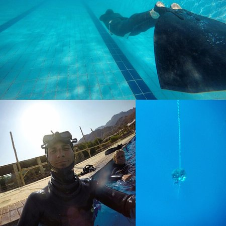 Freedive Dahab : Pool and depth training
