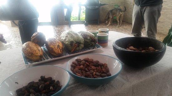 Minca, Colombia: 20161123_153547_large.jpg