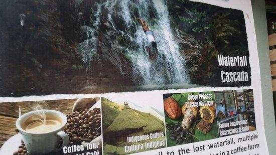 Minca, Colombia: 20161123_161847_large.jpg