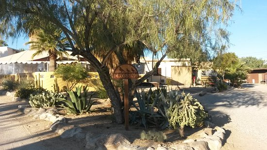 29 Palms Inn: 20161123_074829_large.jpg