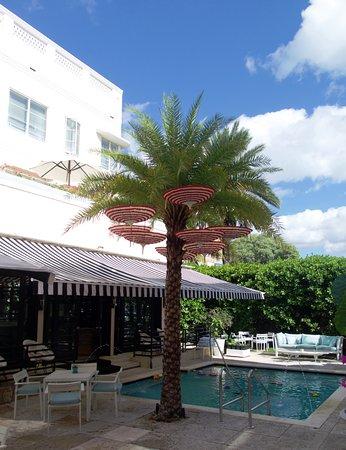 Hotel Astor South Beach Tripadvisor