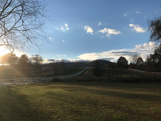 Washington, VA: Beautiful backyard! Great for enjoying a glass of wine and watching the sun set!