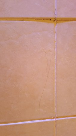 Datchet, UK: Hair on the wall in the shower