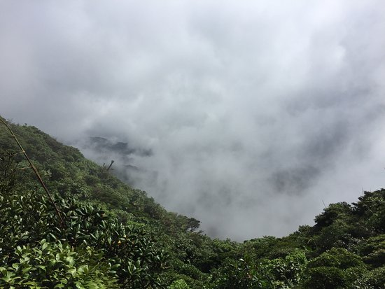 ‪‪Monteverde Cloud Forest Reserve‬, كوستاريكا: photo3.jpg‬
