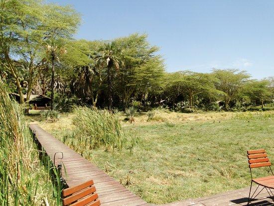 Kisima Ngeda Tented Camp Resmi