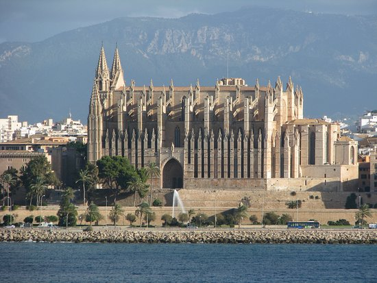 Mallorca Private Tour Guides - Day Tours: A view of from the Harbor