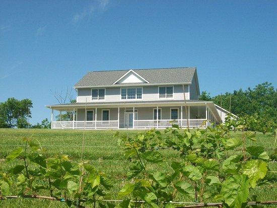 Creekside Vineyards Inn & Wine Terrace, Coal Valley IL