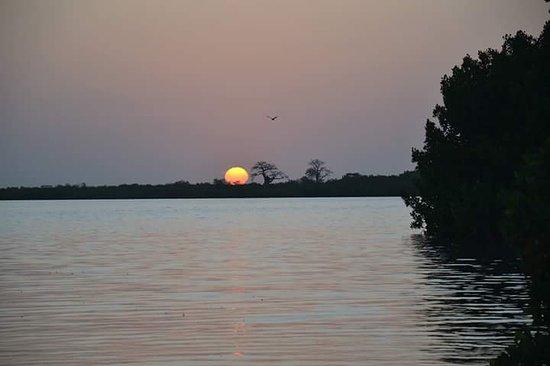 Mbour, เซเนกัล: Les îles du  Saloum