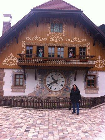 Отели Breitnau