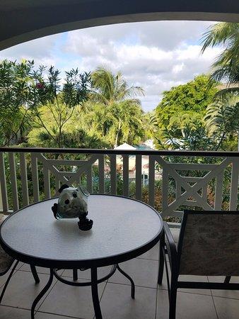 Royal West Indies Resort: Great terrace view