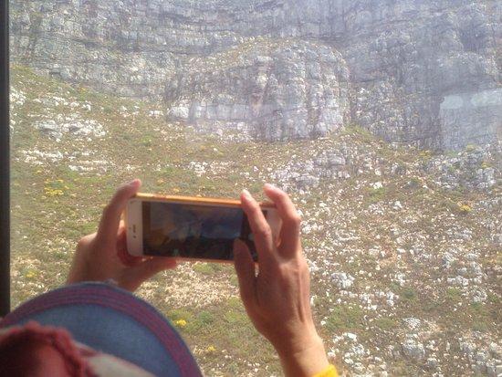 Κόλπος Bantry, Νότια Αφρική: photo1.jpg