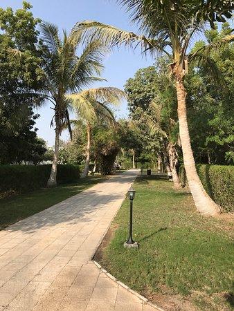 Barka, Omán: photo6.jpg
