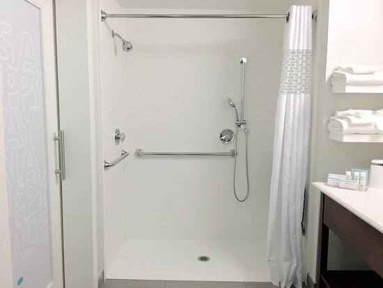 Hampton Inn Lakeland- North I-4 : ADA Roll in Shower