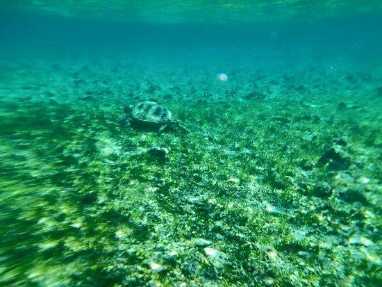 吉利群岛照片
