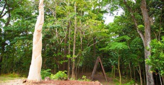 Sainte-Luce, Martinik: vue générale