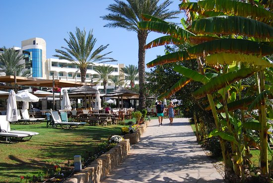 Constantinou Bros Athena Beach Hotel: Athene Beach, gardens and promenade