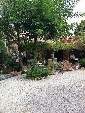 Torrita di Siena, Italy: Dintorni