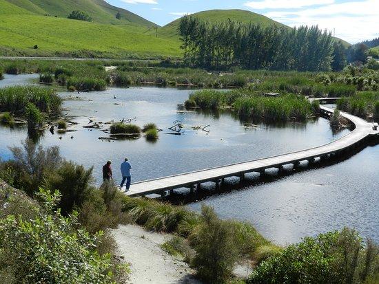 Havelock North, Nueva Zelanda: Wetlands area