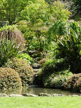 Havelock North, Nueva Zelanda: Botanical Park in Napier