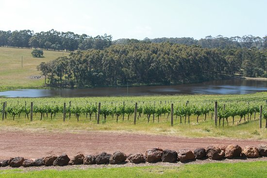 Karridale, Australia: vineyards at Hamelin Bay