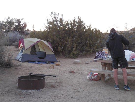 Jumbo Rocks Campground: Jumbo Rock Campground