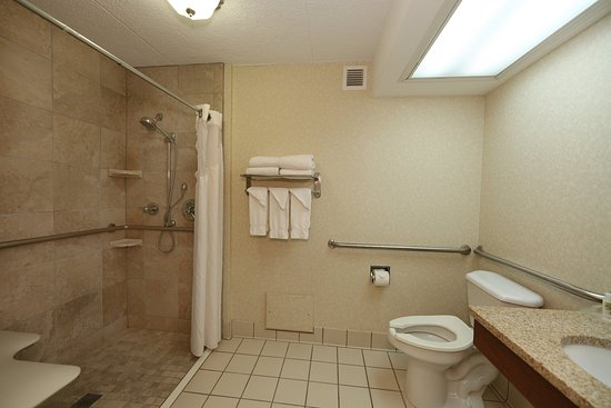 Athens, GA: One Queen Bed Non-Smoking with roll in shower