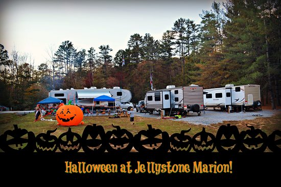 Yogi Bear's Jellystone Park Marion: We stayed in A42 which is the gray camper on the left with the pumpkin. The creek is far left.
