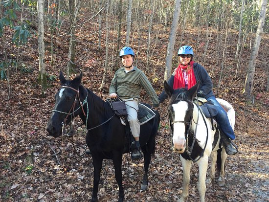 Saddle up trail rides - Picture of Saddle up trail rides, Mills