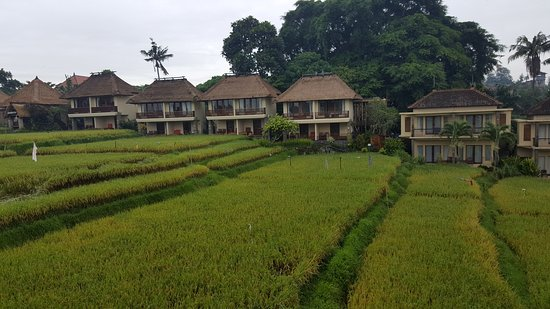 Photo of Biyukukung Suites and Spa Ubud