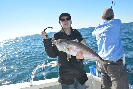 Amberjack picture of distraction charters orange beach for Deep sea fishing houston