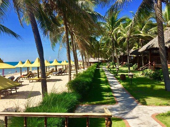 Coco Beach Resort: photo0.jpg