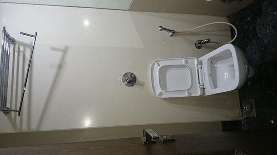 Hotel Host Inn : Conditions of the bedsheet  And leaking hand shower and lose towel hanger