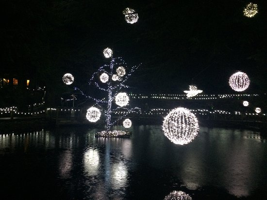 North Vancouver, Canada: Canyon Lights 2016