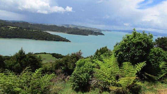 Waiheke Island, New Zealand: Stunning Ocean Views!