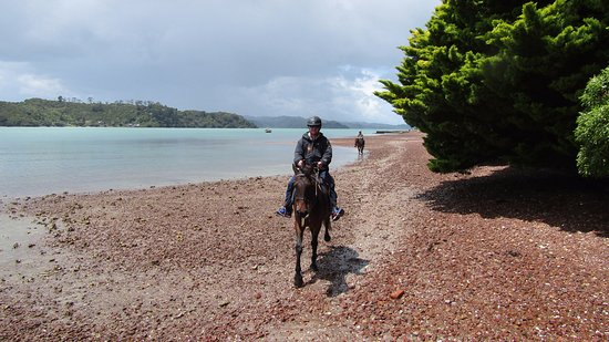 Waiheke Island, New Zealand: Part of the ride along the shoreline!