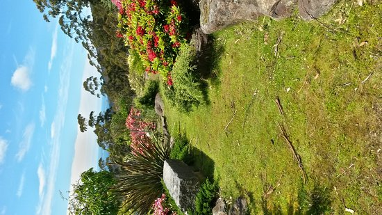 Woodbridge, Australia: 20161124_114259_Richtone(HDR)_large.jpg
