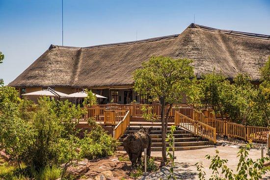 Entrance - Picture of Sebatana Rhino Lodge, Vaalwater - Tripadvisor