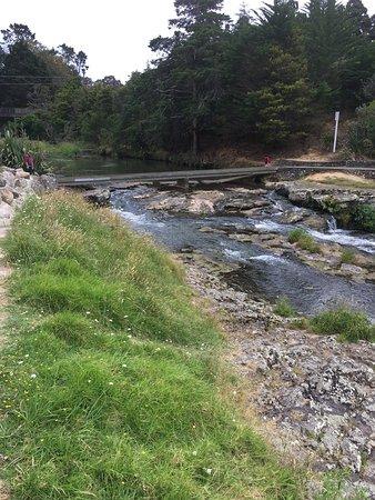 Whangarei, Nueva Zelanda: photo1.jpg