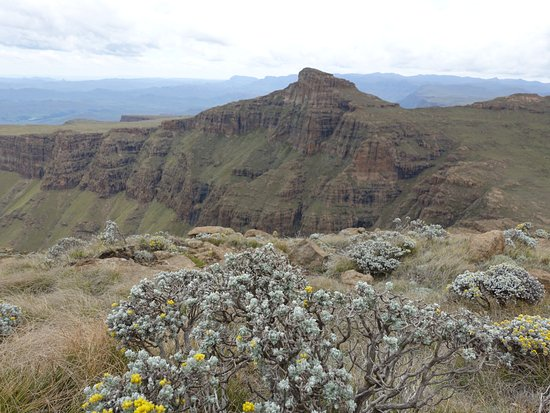 Himeville, South Africa: Hiking